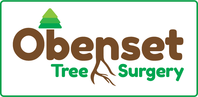 tree surgery logo design 2