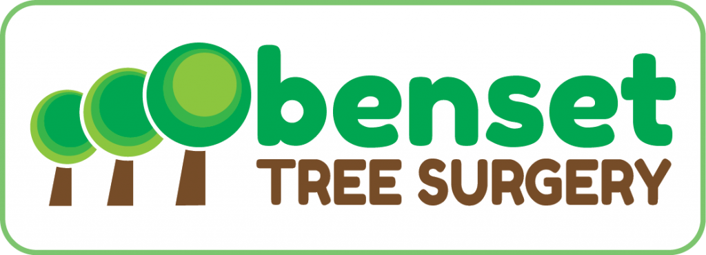 obenset logo design 1